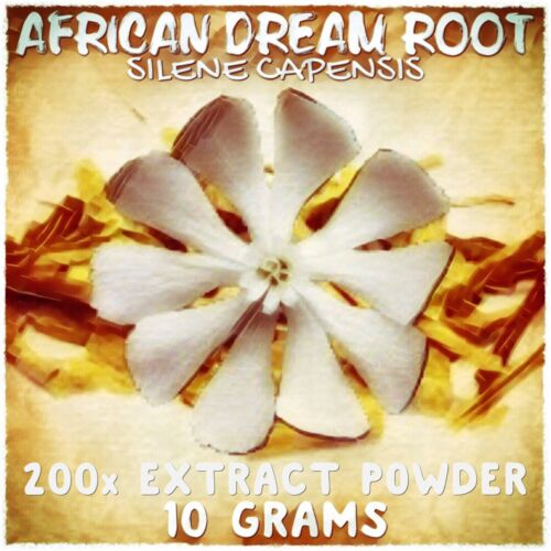 African Dream Root | (Silene Undulata) Capensis 200x Extract Powder [10 Grams]