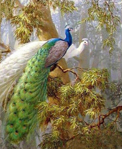 ZWPT233 pretty 100% hand-painted two peacocks wall art oil painting on canvas