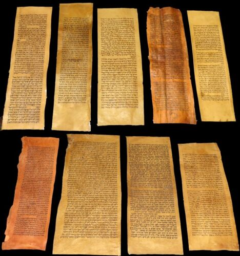 COLLECTION 9 COLUMNS ANCIENT BIBLE SCROLLS HANDWRITTEN PARCHMENT 150-400 years