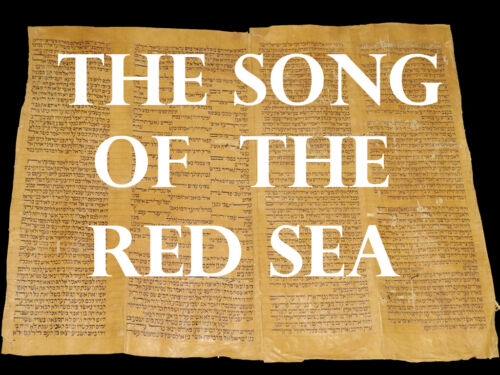 TORAH BIBLE VELLUM MANUSCRIPT FRAGMENT 250 YRS MOROCCO The Song Of The Red Sea