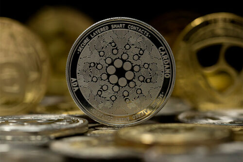 Golden Cardano ADA Cryptocurrency Physical Collectible Art Plastic Case