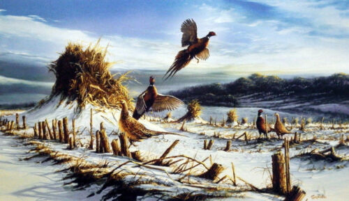 Startled By Terry Redlin Open Edition Pheasant Encore Print