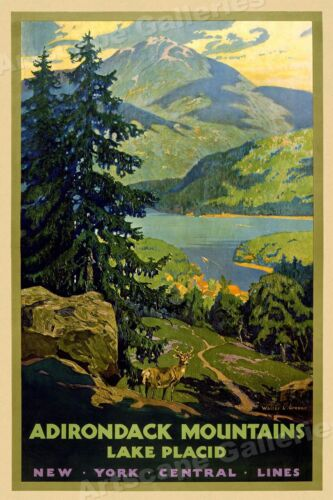 1920s Adirondack Mountains NY Central Lines Vintage Style Travel Poster - 20x30