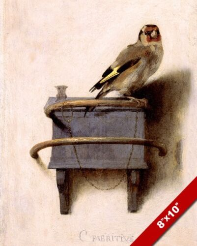 THE PET GOLDFINCH YELLOW FINCH BIRD PAINTING AVIARY ART PRINT ON REAL CANVAS