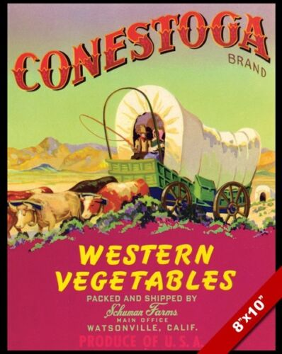 VINTAGE WATSONVILLE CALIFORNIA FARMS POSTER PAINTING FOOD ART REAL CANVAS PRINT