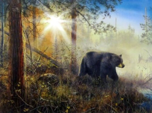"""Shadow in the Mist Bear Art Print By Jim Hansel  Image Size 16"""" x 12"""""""