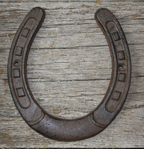 Cast Iron Lucky Horseshoe Rustic Ranch Western  Home Decor 5 1/2 x 6.5 in TEXAS