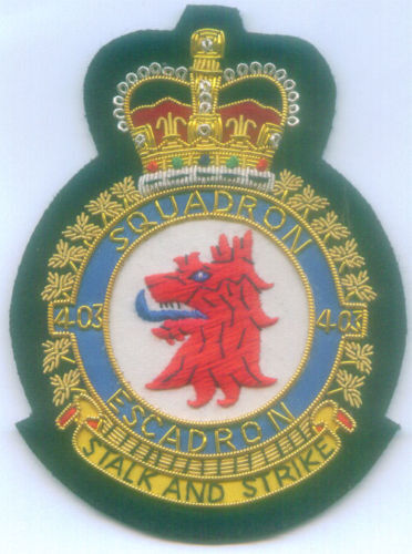 Canada UK RCAF RAF ? Air Squadron Fighter Force 403 Escodron Crest Battle Patch Canada - 156429