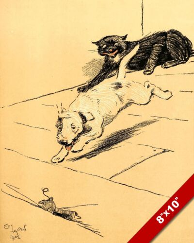 CHASING MOUSE PET PUPPY DOG ANIMAL ART CECIL ALDIN PAINTING PRINT ON REAL CANVAS
