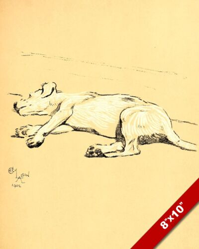 SLEEPING LYING PET PUPPY DOG ANIMAL ART CECIL ALDIN PAINTING PRINT REAL CANVAS