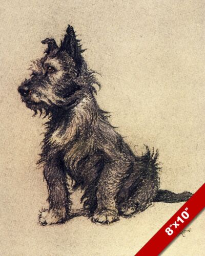 SCOTTISH TERRIER PET PUPPY DOG ANIMAL ART CECIL ALDIN PAINTING PRINT REAL CANVAS