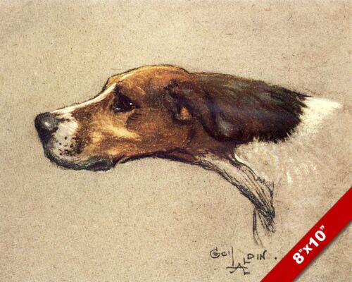 ENGLISH POINTER DOG PET DOG ANIMAL ART CECIL ALDIN PAINTING PRINT ON REAL CANVAS
