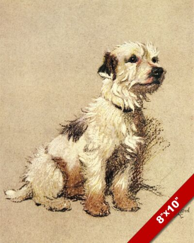 TERRIER PET PUPPY DOG ANIMAL ART CECIL ALDIN PAINTING PRINT ON REAL CANVAS