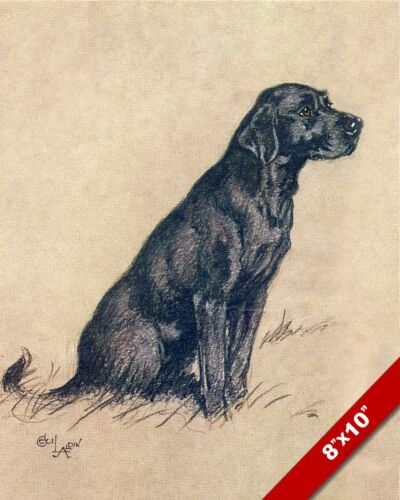 BLACK LABRADOR PET DOG ANIMAL ART CECIL ALDIN PAINTING PRINT ON REAL CANVAS