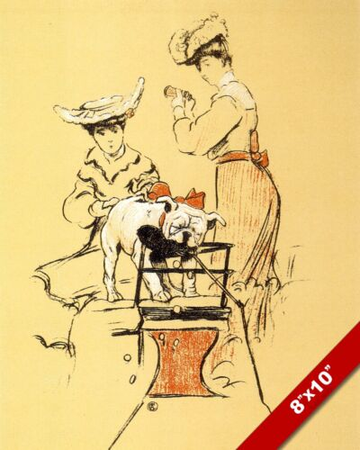 BULLDOG & WOMEN PET DOG ANIMAL ART CECIL ALDIN PAINTING PRINT REAL CANVAS