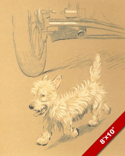 TERRIER BEHIND CAR PET PUPPY DOG ART CECIL ALDIN PAINTING PRINT ON REAL CANVAS