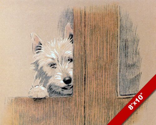 PEEKING TERRIER PET PUPPY DOG ART CECIL ALDIN PAINTING PRINT ON REAL CANVAS
