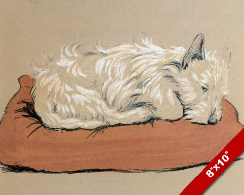 SLEEPING TERRIER PET PUPPY DOG ART CECIL ALDIN PAINTING PRINT ON REAL CANVAS