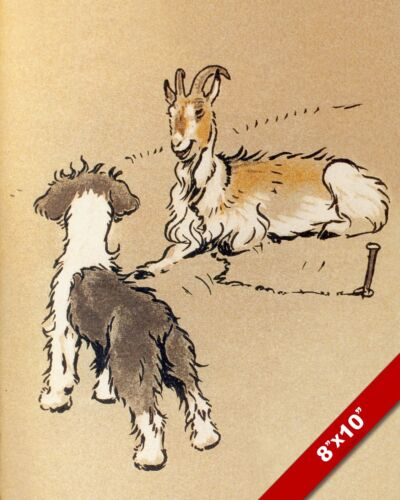 SHEEPDOG MEETS A GOAT PUPPY DOG ART CECIL ALDIN PAINTING PRINT ON REAL CANVAS