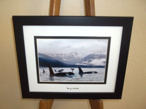 By Wyland (Orcas Northern Waters) Framed Double Matted With Silver Foil Stamp