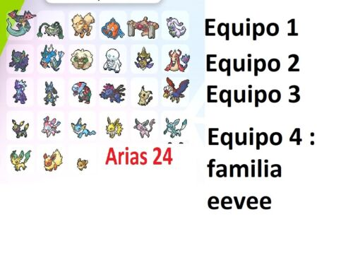 pack equipo competitivo (modificable) 6 ivs.