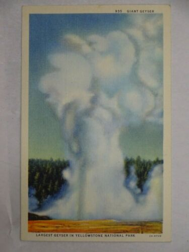 c1925 Curt Teich Linen Postcard Giant Geyser Yellowstone National Park Unposted