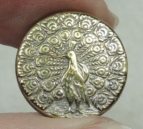 ANTIQUE SMALL SILVERED BRASS PICTURE BUTTON ~ PEACOCK ~ DEPOSE PARIS