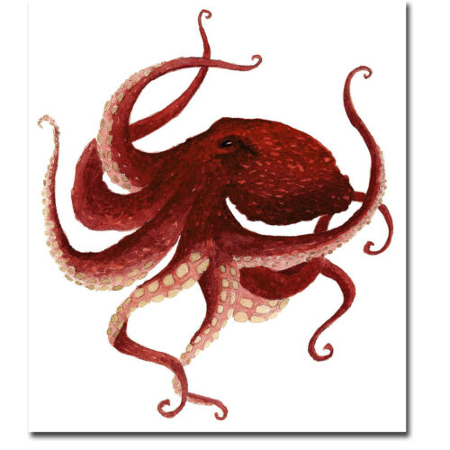 Giant Pacific Octopus - Red Gallery-Wrapped Canvas Giclee Art (24 in x 21 in)