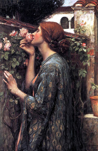 The Soul of the Rose   by John William Waterhouse  Giclee Canvas Print Repro