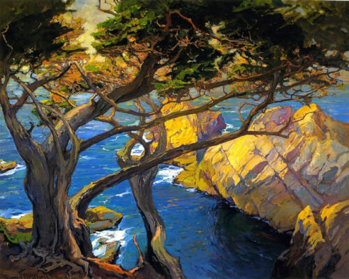 Cleft-Born Trees, Monterey   by Franz Bischoff  Giclee Canvas Print Repro