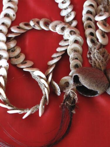 Old New Guinea Central Highlands Kina Shell Necklace… from the 1960's...