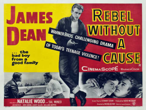 1955 REBEL WITHOUT A CAUSE VINTAGE JAMES DEAN MOVIE POSTER PRINT 27x36 9MIL