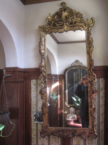 """Antique Large Wall Mirror 19th century Hand Carved Floral Gold Gesso 54"""" Tall"""