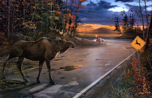 Moose on the road Oil painting Wall art HD printed on canvas L1410