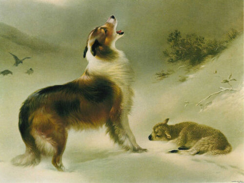 Found  by Walter Hunt  Giclee Canvas Print Repro