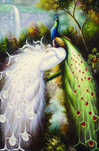 Peacock in the jungle Oil painting Giclee Art Printed on canvas L641