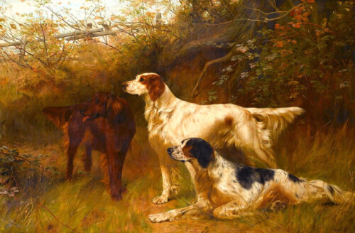 Three hounds Oil painting Giclee Art Printed on canvas L2048