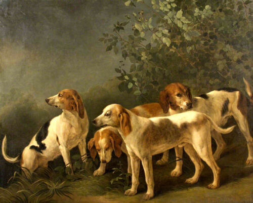 Four little hounds Oil Painting Giclee Art Printed on canvas L2049