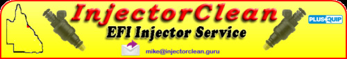 DOMAIN NAME - InjectorClean.guru
