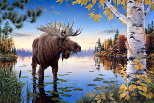 The moose oil painting picture home decor wall art printed on canvas L2366