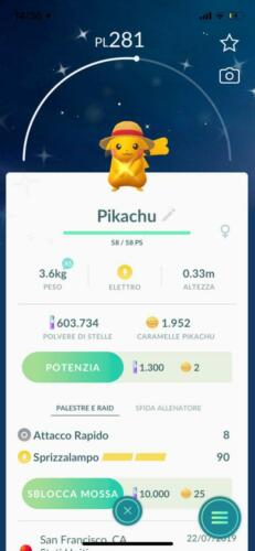 Shiny Pikachu one piece straw hat Pokemon Go limited edition very rare COLLECTOR