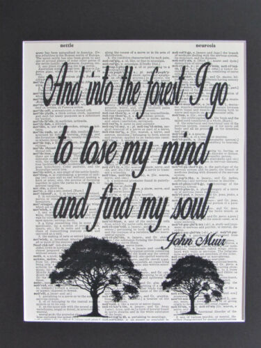 And Into The Forest I Go To Lose My Mind John Muir Dictionary Print, Not Framed