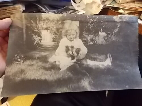 VINT CABINET PHOTO, YOUNG BLONDE GIRL WITH HER TWO PUPPY DOGS