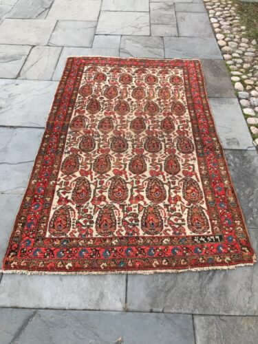 Antique Tribal rug. Hand knotted wool, organic dyes, all over paisley 4' x 7'