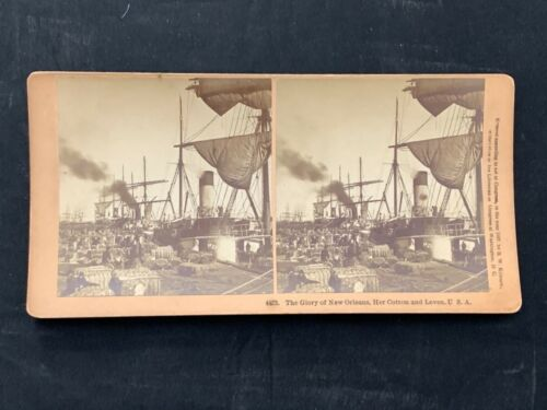 The Glory of New Orleans Cotton on Levee 3D stereoview - Kilburn