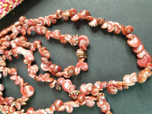 Old Pacific Sea Shell Necklace …beautiful accent piece