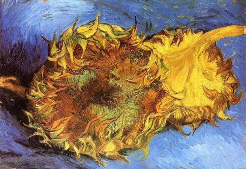 Oil painting Vincent Van Gogh - Two Cut Sunflowers - Yellow still life flowers