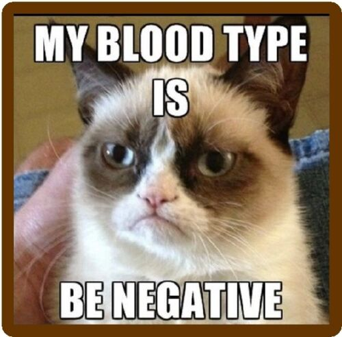 Funny Grumpy Cat Be Negative Blood Type  Refrigerator / Tool Box / Magnet
