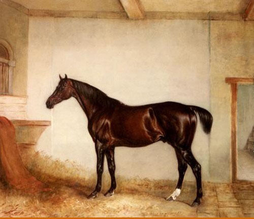 Dream-art Oil painting nice animal Maroon horse in Stable on canvas hand painted
