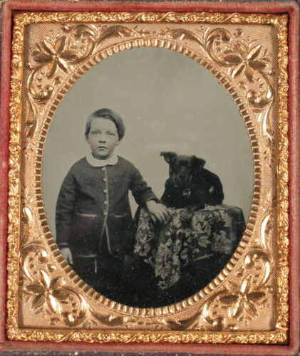 AMBROTYPE BOY AND DOG, TINTED. 1/6 PLATE, FULL CASE.